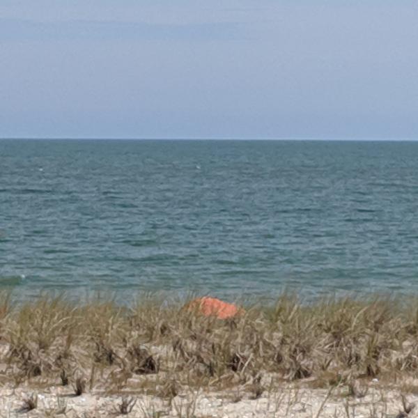Orange umbrella at the beach