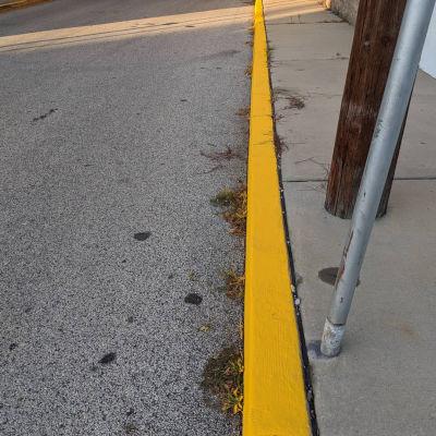 Morning walk yellow 9